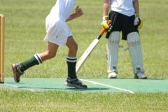 U/11 Cricket