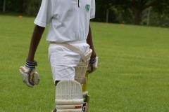 U/13 Cricket