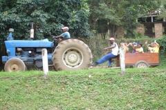 Gr 1 Animal Farm