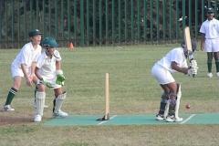 Cricket U/13